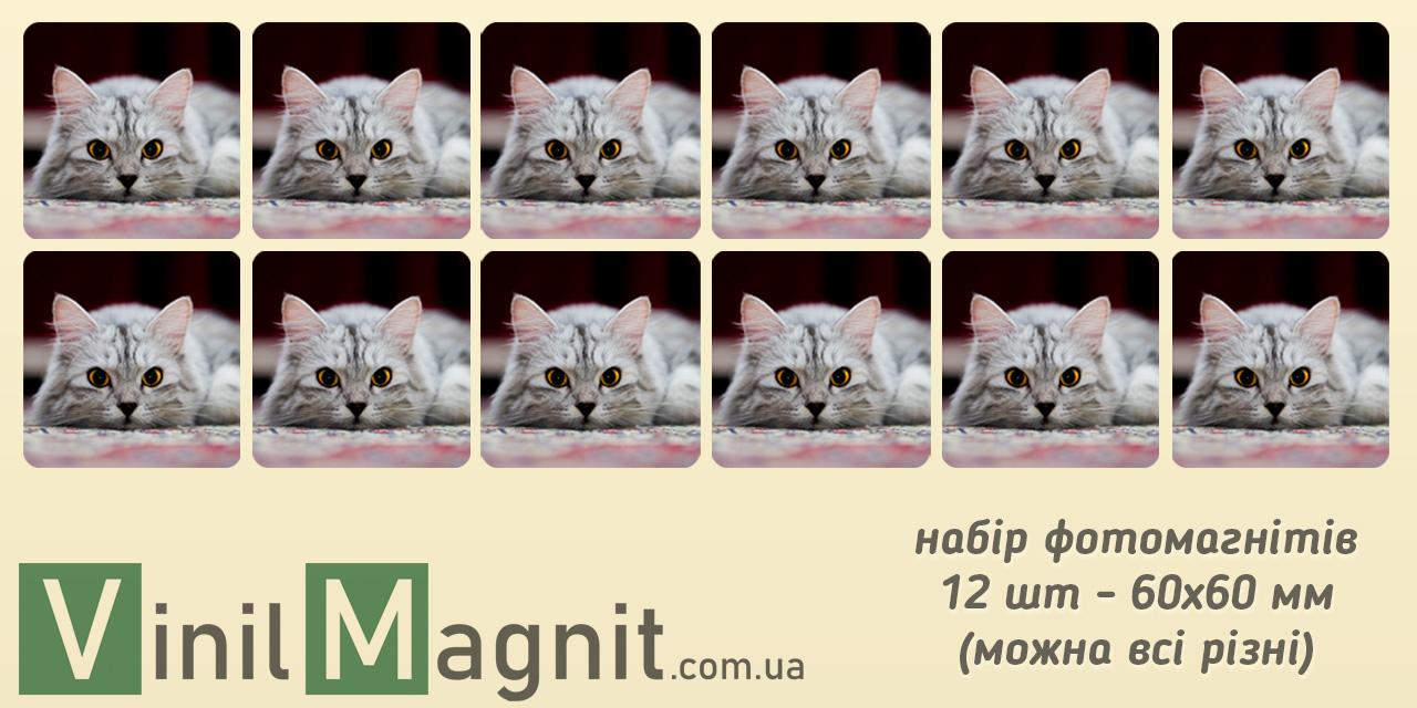Магнітики з фото 60*60 мм